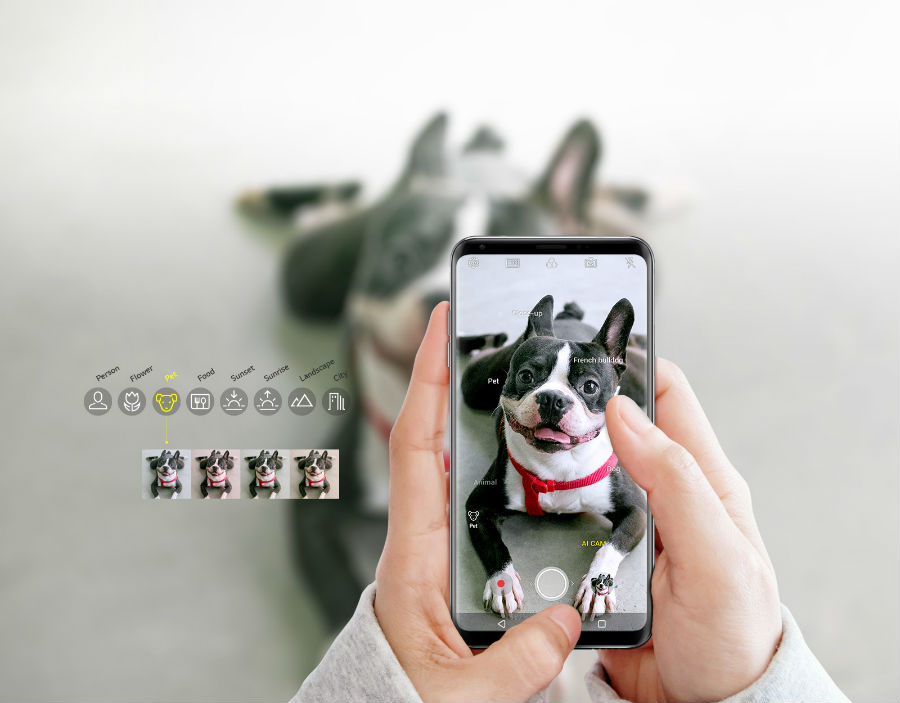 LG V30S+ ThinQ Vision AI taking picture of dog