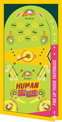 Zespri Human Pinball Machine map