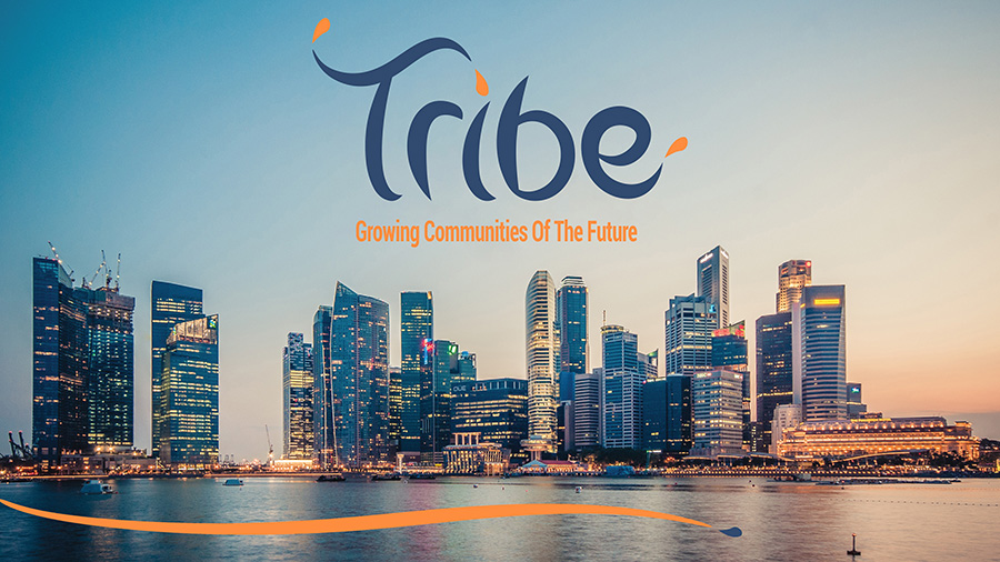 Tribe Accelerator poster