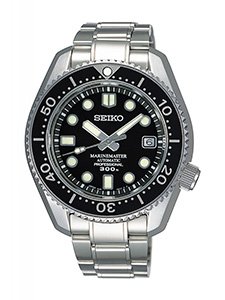 Diver watch example