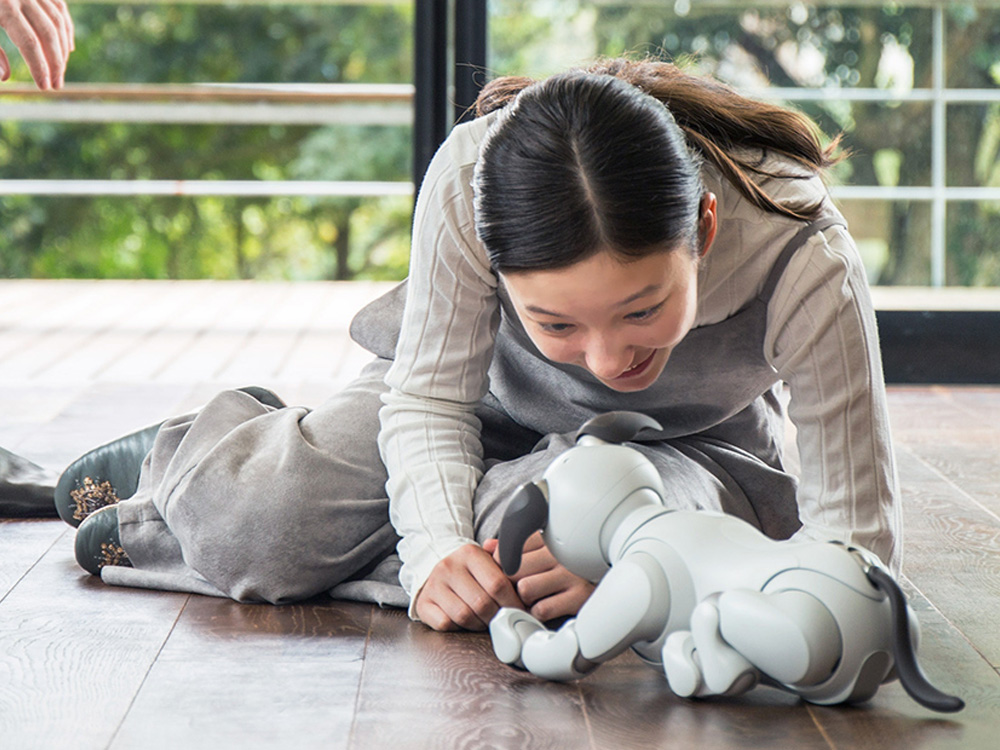 Girl playing with aibo