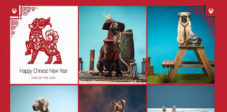 Xbox Cospups year of the dog banner