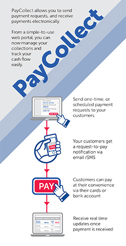 What PayCollect can do