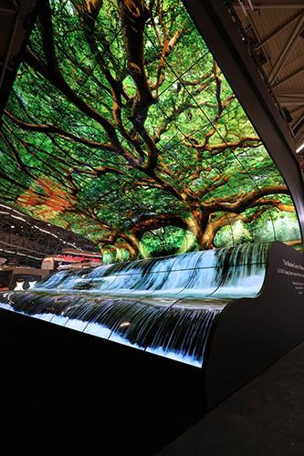LG OLED Falls display